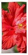 Red Hibiscus Square Bath Towel