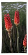 Red Hot Pokers Bath Towel