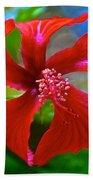 Red Hyacinth In Bourbon Resort Gardens Near Iguazu Falls National Park-brazil  Bath Towel