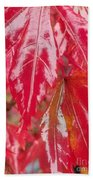 Red Leaf Abstract Bath Towel