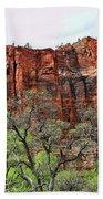 Red Mountains Zion National Park Usa Bath Towel