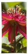 Red Passion Flower Bath Towel
