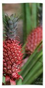 Red Pineapples Hand Towel