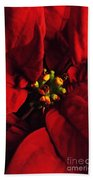 Red Poinsettia Floral Art Bath Towel