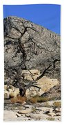 Red Rock Canyon Nv 1 Hand Towel