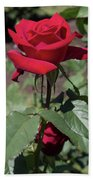 Red Rose With Stem Hand Towel