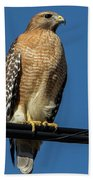 Red-shoulder Hawk Bath Towel