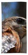 Red Shouldered Hawk - Profile Bath Towel