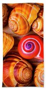 Red Snail Shell Bath Towel