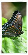 Red-spotted Purple 4172 Bath Towel