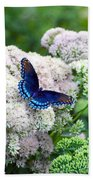 Red Spotted Purple Butterfly On Sedum Bath Towel