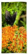 Red Spotted Purple Butterfly Bath Towel