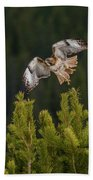 Red-tail Flight At Sunset Hand Towel