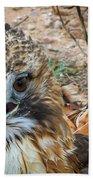 Red-tailed Hawk Bath Towel