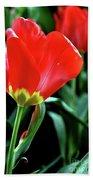 Red Tulips Bath Towel