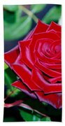 Red Velvet Rose Bath Towel