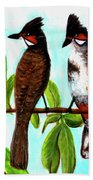 Red-whiskered Bulbul Bird, #246 Bath Towel