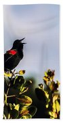 Red Wing Black Bird  Bath Towel