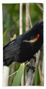 Red-winged Blackbird Bath Towel