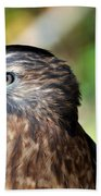 Redtail Bath Towel