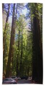 Redwoods Bath Towel