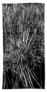 Reeds Reflection  Bath Towel