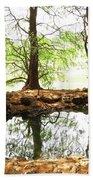 Reflecting Tree Trunks Bath Towel