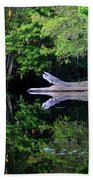 Reflection Off The Withlacoochee River Bath Towel