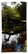 Reflections And Shadows Bath Towel by Warren Thompson