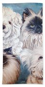Reigning Cats N Dogs Bath Towel
