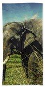 Remember Elephant Bath Towel