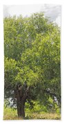 Remember The Trees Bath Towel