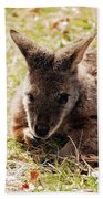 Resting Wallaby Bath Towel