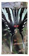 Resting Zebra Swallowtail Butterfly Square Bath Towel
