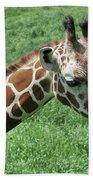 Reticulated Giraffe #3 Bath Towel