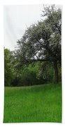 Rhineland-palatinate Summer Meadow Bath Towel