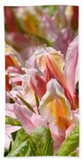 Rhododendrons Floral Art Prints Canvas Pink Orange Rhodies Baslee Troutman Bath Towel