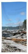 Rialto Beach Washington  Hand Towel