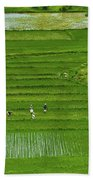 Rice Fields Bath Towel