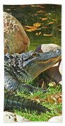 Richly Hued Colorado Gator On The Rocks 2 10282017 Hand Towel