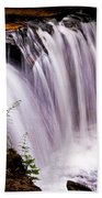 Rickett's Glen State Park Bath Towel