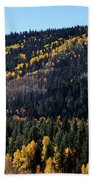 Rio Grande National Forest Bath Towel