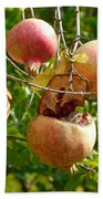 Ripe Pomegranates Bath Towel
