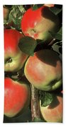Ripening Apples Bath Towel