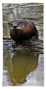 Rive Otter Bath Towel