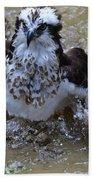 River Hawk Splashing Around In The Water Bath Towel