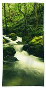 River In A Green Forest Bath Towel