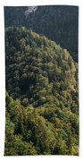 River In Forest Mountains Bath Towel