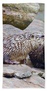 River Otters Bath Towel