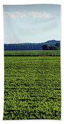 Riverbottom Farms Hand Towel by Cricket Hackmann